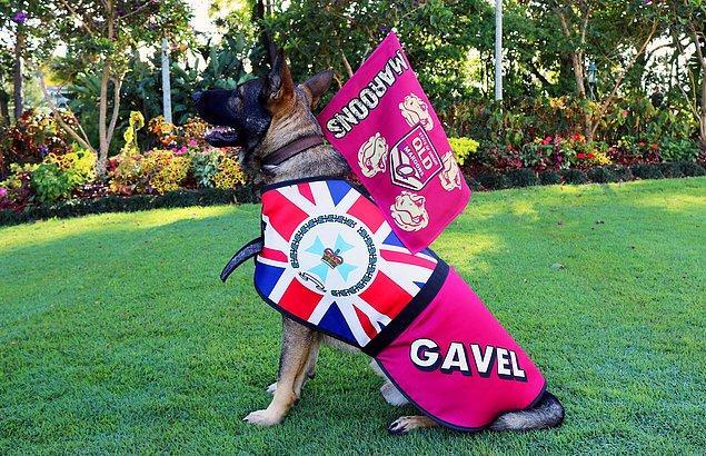1. Gavel - Queensland Valiliği karşılama komitesi müdürü