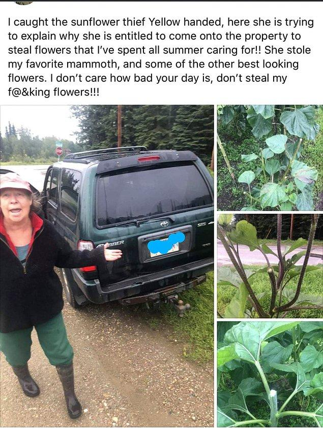 14. Binbir emekle büyüttüğü bitkileri çalan kadını suç üstü yakalamış...