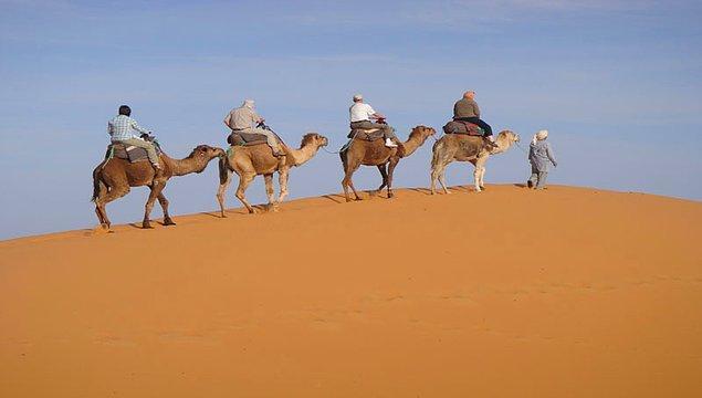 11. 2013 yılında, Mali'yi özgürleştirmek için Fransa'ya hediye edilen deve, Timbuktu'da bir ailenin bakımına verildiğinde öldürülüp güveçte yenerek talihsiz bir sonla karşılaştı.