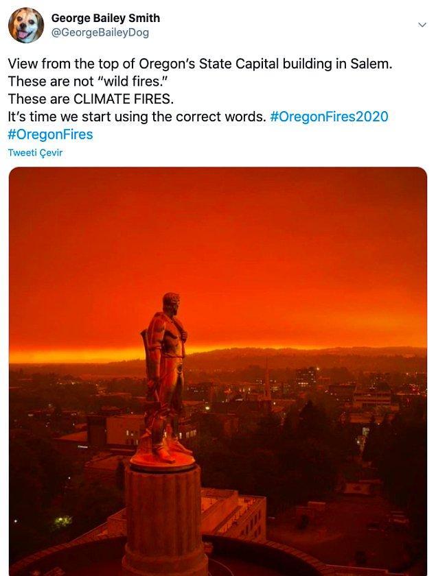 """12. """"Bunlar yangın değil, bunlar iklim yangınları. Doğru kelimeleri kullanmaya başlama zamanımız geldi."""""""