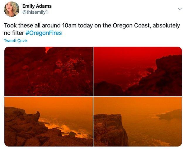"""19. """"Bütün fotoğraflar bugün 10'da Oregon Sahili'nde çekildi."""""""