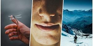 20 самых жутких фактов, узнав которые, вы не сможете продолжать жить, как раньше