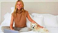 Гвинет Пэлтроу продает кровать, сделанную из экологически чистых материалов, за 45 000 фунтов стерлингов на сайте Goop, посвященному здоровому образу жизни