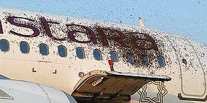 """В Индии массивный рой пчел """"захватил"""" два пассажирских самолета, которые  приземлились с разницей в несколько часов"""