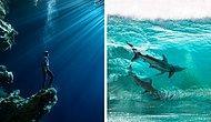 27 лучших фото с океаном от финалистов конкурса Ocean Photography Awards