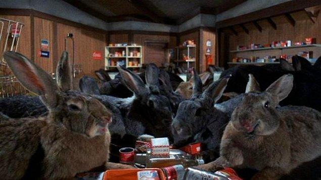 7. Night of the Lepus (1972) - Havuç yiyip şirinlik yapması gereken tavşanlar insan yemeye başlıyor.