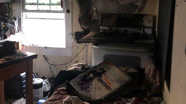 Barınak yangında tamamen yok olmadı ama W-Underdogs'un kurucusu Gracie Hamlin yangından sonra binanın kullanılmaz halde olduğunu anlattı.