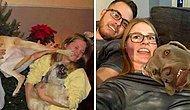 20 новогодних фотографий, которые должны были получиться адекватными, пока не появилась собака