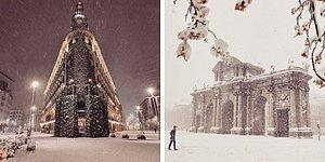 Самый большой снегопад за полвека поразил Мадрид, и один фотограф запечатлел это историческое событие (20 фото)