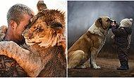 Hangi Hayvanla Arkadaş Olmalısın?