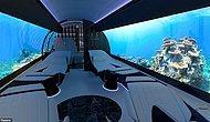 Швейцарская компания представила новые дизайны кабин самолетов, где вместо окон будут огромные экраны с трансляцией фильмов
