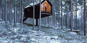 """Финские архитекторы спроектировали """"одноногий дом"""" в лесу, вдохновившись традиционными хижинами для хранения продуктов в безопасном месте от медведей"""