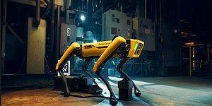 Теперь собака-робот Spot от Boston Dynamics умеет не только танцевать, но и открывать двери, садовничать и даже помогать со стиркой!