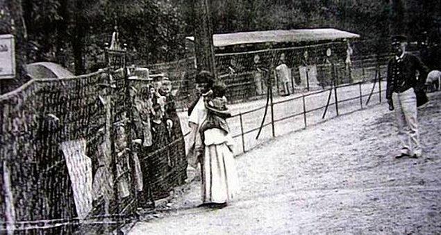 Amerika'da değişik hayvan türlerinin yanı sıra albino, cüce ve kambur insanlar da yer alıyordu. Kolomb bile, Amerikan yerlilerini sergilemek amacıyla, İspanya'ya getirmişti.