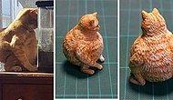 Художник превращает забавные фото животных в скульптуры, которые заставят вас смеяться (20 фото)
