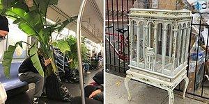 20 сокровищ, которые люди нашли выброшенными прямо на улицах Нью-Йорка
