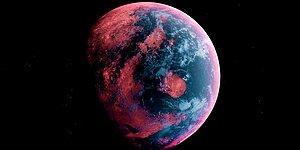 Тест: Как хорошо вы знаете биологическую историю нашей планеты?
