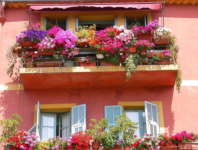 10. Rengarenk, mis kokulu balkonlar yazın en güzel yanlarından biri...