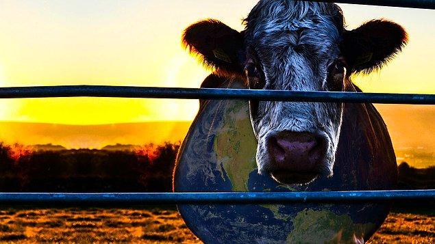 9. Cowspiracy: The Sustainability Secret