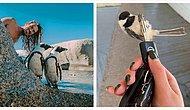 """""""Улыбочку!"""", или 12 раз, когда животные были сфотографированы в самый удачный момент"""