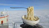 6 охлаждающих фактов о жизни в Антарктиде