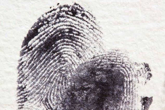 Ancak Young'un yazmış olduğu itiraz dilekçesine istinaden cinayet mahalinde bulunan yeni parmak izi örneği ulusal veri tabanına ilk kez girmiş oldu. Lee'nin parmak izlerinin bu parmak izleriyle eşleşmediğiyse uzun süredir biliniyordu.