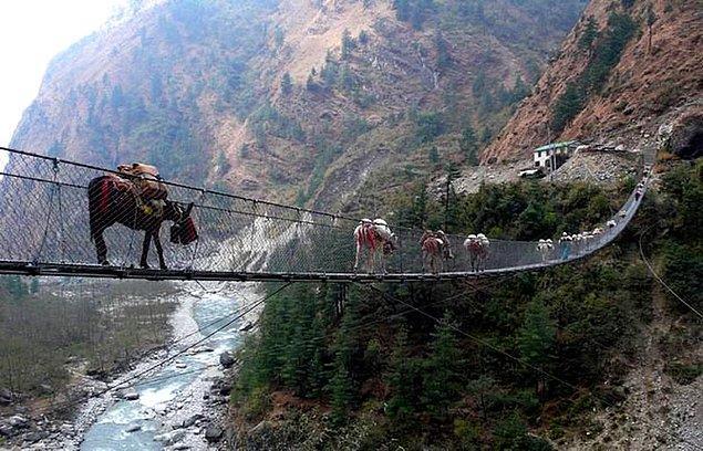 15. Ghasa Asma Köprüsü - Ghasa, Nepal