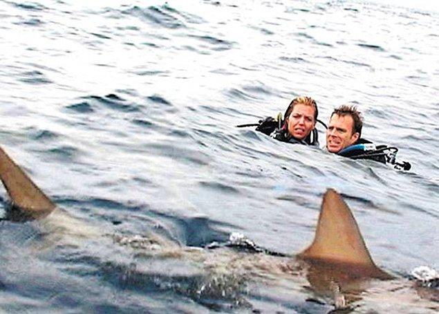 7. Açık Deniz (2003)