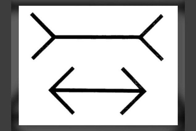 6. Hangi çizgi daha uzun?