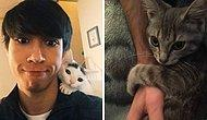 15 «бесстыжих» домашних животных, которые похитили партнеров своих хозяев и даже не жалеют об этом (Новые фото)