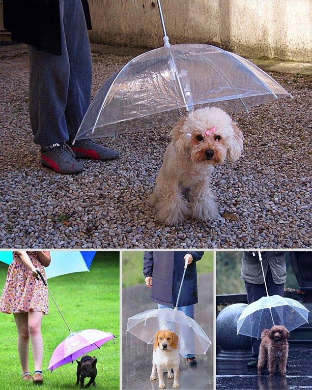 13. Minik şemsiyeler