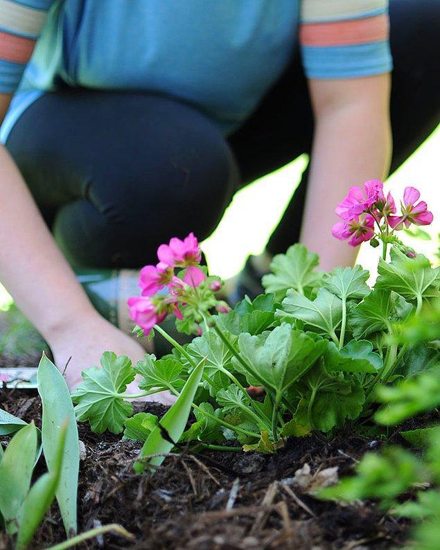 """18. """"Bahçemdeki çiçekleri koparıp kendi bahçesine dikmişti."""""""