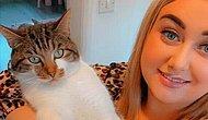 Самый живучий кот Британии пережил три перестрелки, где его трижды ранили