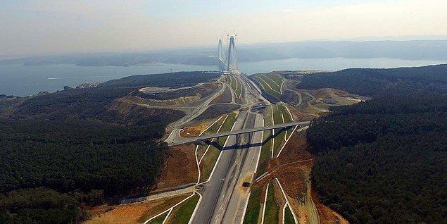Kuzey Marmara Otoyolu ve 3. Havalimanı için yok edilen milyonlarla ağaç...