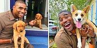 Курьер делает фотографии с милыми собачками, которых встречает во время работы (20 фото)
