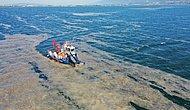 Müsilaj Kabusunun İlk Test Sonuçları Açıklandı: Deniz Salyasının Nedeni Ne?