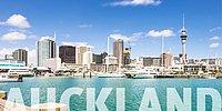 Новозеландский город Окленд был признан самым пригодным для жизни городом в мире