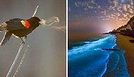 15 редких фотографий, раскрывающих невидимую/другую сторону вещей