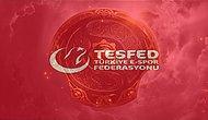 Türkiye Espor Federasyonu The International 10 Ev Sahipliğine Talip Oldu
