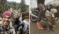 Когда жизнь кота разнообразнее твоей: Парень путешествует со своим дружком, посещая разные уголки мира