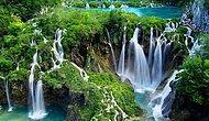 Cennet Vatanımızın Doğasına Ne Kadar Hakimsin?