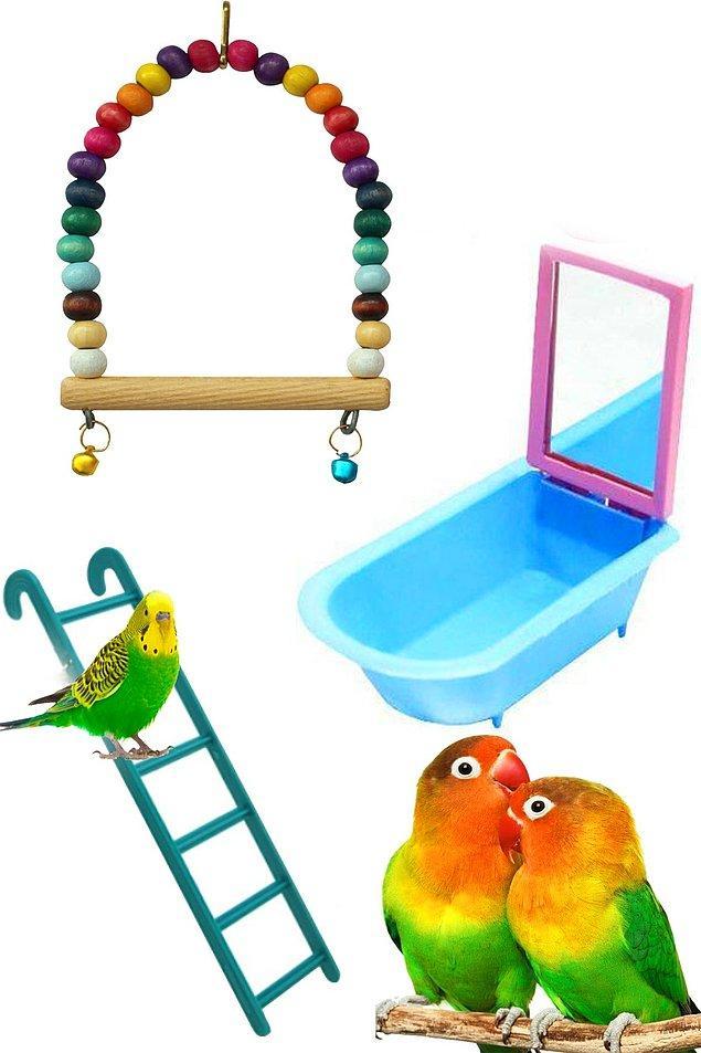 15. Kuşlar için ürünler