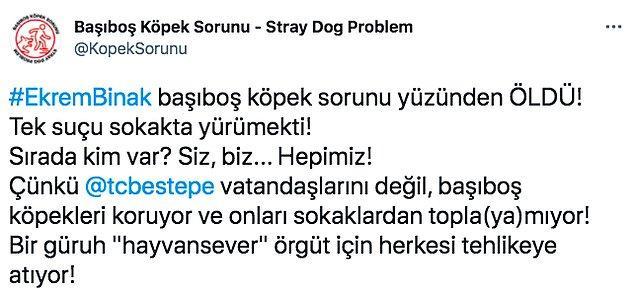 """Bu ölümün ardından da başıboş gezen sokak köpekleriyle ilgili """"sorun"""" yeniden gündeme gelmişti. """"Başıboş Köpek Sorunu"""" isimli sayfa da bu sorunla ilgili Twitter'dan böyle bir paylaşım yaptı."""