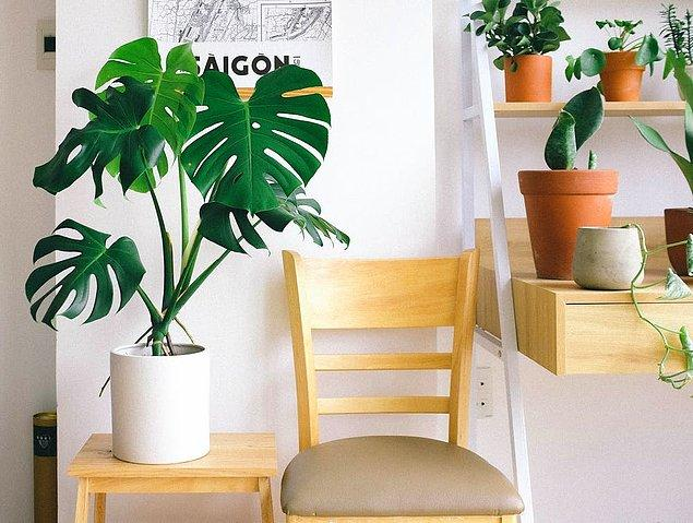 10. Mevsime göre evinizin dekorasyonunu düzenleyebilirsiniz.
