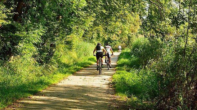 Ünlü bir bisiklet markası da ağustos ayında düzenleyeceği etkinlik için hazırlıklarına ve antrenmanlarına devam ediyordu.