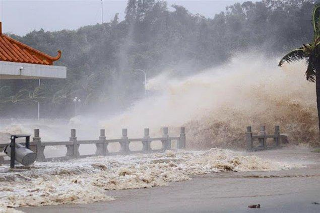Bazı kaynaklara göre Temmuz-Ağustos ayları arasında yaşanan 9 tayfun da sel felaketini etkilemişti.
