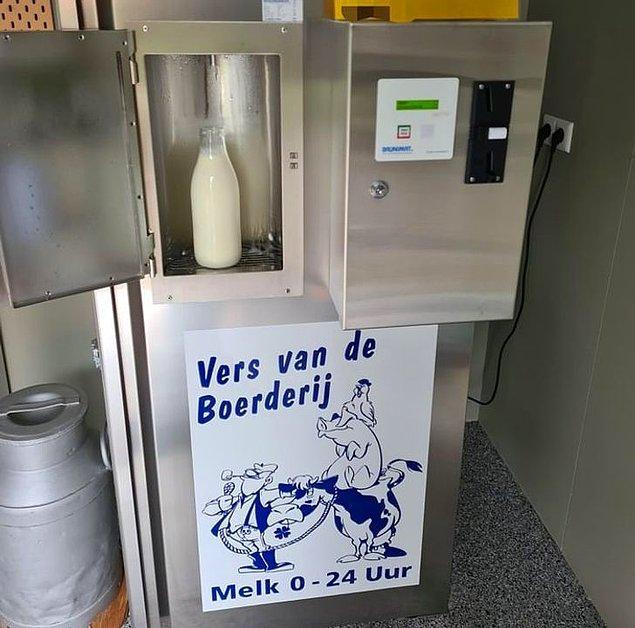 """14. """"Hollanda'da birçok çiftçi, insanların çiftliğin kendisinden taze süt alabilecekleri makinelere sahip. Süpermarketten daha ucuz ve çiftçilere ürünleri için daha fazla kâr sağlıyor."""""""