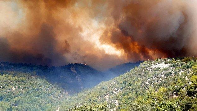 """""""Yangın, 40 bin hektarı aşmış durumda"""""""