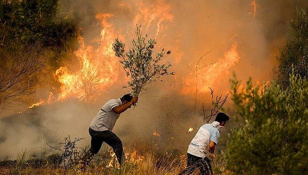Geçtiğimiz temmuz ayında yurdumuzun dört bir yanını saran orman yangınları hepimizi mahvetmişti; biliyorsunuz.