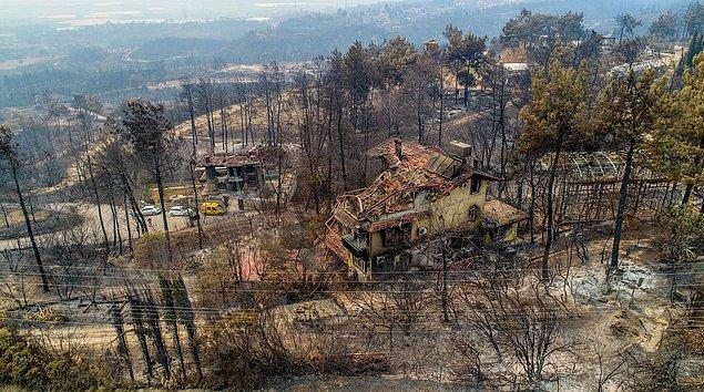İki orman işçisi hayatını kaybetti